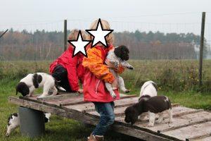 Kunterbunt Hunde